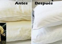 Aprende a lavar y blanquear tus Almohadas amarillas que atrapa acaros y producen alergias – Fullactivao