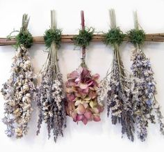 Create a whimsical, delicate bouquet with beautiful dried flowers for a rustic or vintage-inspired wedidng. The muted pastels and earthy textures of dried flowers. Decoration Evenementielle, Hanging Herbs, Deco Nature, Dried Flower Arrangements, Arte Floral, Vintage Roses, Shabby Vintage, Potpourri, Flower Art