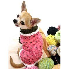 Dog Clothes Crochet Myknitt #cutedogs #chihuahua #Christmas