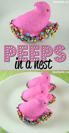 Peeps in a Nest Easter Treat - Need a fun hands on Easter treat? Have your kids help you made these Peeps in a Bird Nest with chocolate and sprinkles. They will disappear quickly!