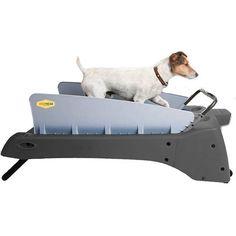 DogTread Small Dog Treadmill - With K9 Fitness Program