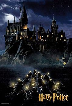 Harry Potter Hogwarts 1000 Piece Jigsaw Puzzle – Finished size: 19.2 x 28.3 inches.: