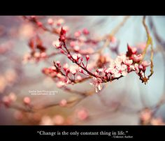 """""""Change is the only constant thing in life."""" by Sasha Bell, via Flickr"""