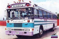 Malta Bus, Bluebird Buses, Nice Bus, Old School Bus, Bus Coach, Busses, Blue Bird, Cars Motorcycles, American