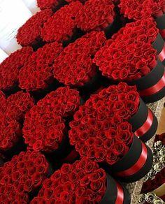 Garbine Muguruza Blanco-WTA Red roses in box - a great gift! million roses, roses in boxes, red roses box flower, box roses Amazing Flowers, Beautiful Roses, Beautiful Flowers, Red Flowers, Million Roses, Preserved Roses, Box Roses, Rose Gift, Rose Images