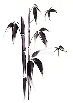 Illustration about Abstract painted black japanese bamboo leaves illustration on white background. Art is created and painted by myself. Illustration of leaf, growth, botanical - 5951396 Japanese Ink Painting, Sumi E Painting, Japanese Art, Tattoo Japanese Style, Bamboo Tattoo, Bamboo Art, Art Asiatique, Watercolor Projects, Tinta China