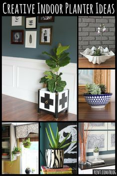 Bring a little bit of spring indoors with plants and flowers! Here are some creative ideas for branching out and incorporating some creativity when adding plants to your home.