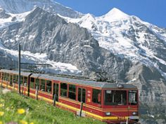 The only way into Wengen is by cog train, there is no way of getting auto's in.