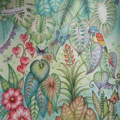 Mais um pedacinho pronto magical jungle... #johannabasford. #jardimsecreto. #coloriage. #coloringbookforadults #magicaljungle
