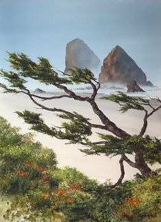 The Jeffrey Hull Gallery Watercolor Pictures, Watercolor Trees, Watercolor Landscape, Watercolor Paintings, Original Paintings, Watercolors, Watercolor Ocean, Cannon Beach, Landscape Drawings
