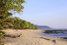jungle meets beach...like this!