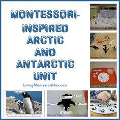 Montessori-inspired arctic & antarctic unit (other winter ideas here: http://prekandksharing.blogspot.ca/2013/01/montessori-inspired-winter-math-activities.html)