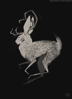 "rusakko-art: """"Request 05 Jackalope, requested by multiple people. Illustrations, Illustration Art, Desenho Tattoo, Creature Design, Mythical Creatures, Dark Art, Art Inspo, Art Reference, Amazing Art"