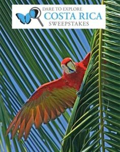Enter Pottery Barn Kids' Dare to Explore Costa Rica Sweepstakes for your chance to win a National Geographic Expeditions trip for four to Costa Rica and the Panama Canal.