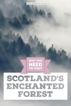 Have you ever wanted to visit an enchanted forest in the beautifully mysterious Scottish countryside! Well, this years event - held in Pitlochry, Scotland is sure to be a magical experience that you will want