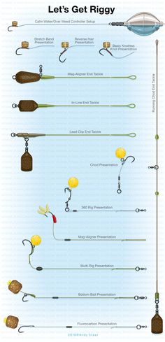 Carp Short Session Success by Julian Cundiff - Rig illustrations artwork #fishing #bassfishing #flyfishing