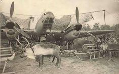 World War II. The Soviet Union, Karelian Front, Arctic,1942.  Reindeer battalion - Reindeer army #WWII #Arctic #ReindeerBattalion #Russia #Nenets
