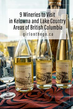 9 Wineries to visit in the Kelowna and Lake Country areas of British Columbia Canada. Things To Do In Kelowna, Western Canada, Visit Canada, All I Ever Wanted, British Columbia, Columbia Travel, Skiing Colorado, Colorado Winter, Canada Travel