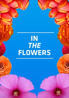 in the flowers  #poster #design #flowers