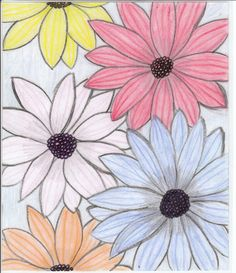 flower drawings | flowers for flower lovers.: flowers drawing.