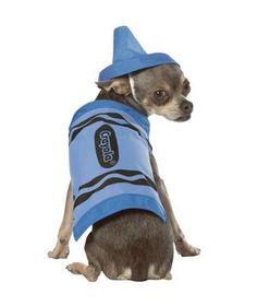 Crayola Crayon Blue #dogs #halloween #costume #animals @Dave Grube !! :) Peanut
