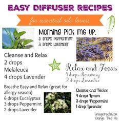 Essential oils used in aromatherapy, as well as other types of health and house health, has a life span from 1 to 3 years-- when stored in a dark colored glass jar or vial. The only exception to this is Citrus oil, which lasts from 6 months to 1 year. Top Essential Oils, Essential Oil Diffuser Blends, Tea Tree Oil Uses, Diffuser Recipes, Diffuser Diy, Aromatherapy Oils, Melaleuca, Lavender Oil, Lemon Eucalyptus