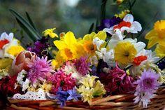 Mélodie romantique de couleurs!. Discussion sur LiveInternet - service russe journal en ligne