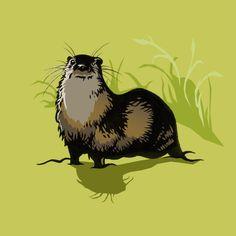 Otters, Norfolk, Trust, Wildlife, Illustration, Animals, Animales, Otter, Animaux