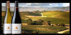 Napa: Artesa Winery -- known for its pinot noir