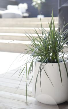 Simple green grass in a big white pot lets the terrace feel more lively. (Source: Stylizimo, Photo: Nina Holst)