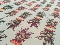 See this Instagram photo by @morganndanielsillo • 34 likes#art #artist #artwork #artoftheday #sketch #sketchbook #sketchoftheday #illustration #illustrator #illustrationoftheday #morganndaniels #ny #nyc #newyork #brooklyn #bushwick #draw #drawing #paint #painting #pineapples #pineapple #digitalart #savannah #pineapplepattern #southern #teal #print #tropical #tropicalpattern