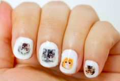 These little transfers decals are made from pictures of real persian kitty cats. There are 42 water transfers that blend in perfectly with clear or pale nail polish. #cats #catnails #persiancats #naildecals #nails #obscuraoutfitters #cute #nailideas