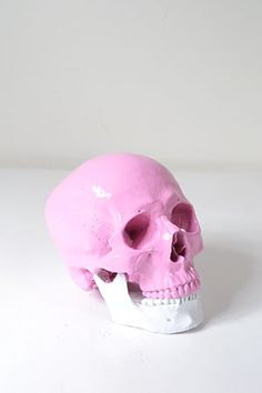 Anatomically Correct Candy Skull