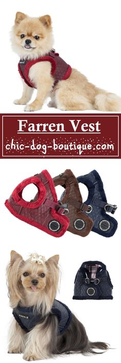 Walk your dog in style this Fall with the Puppia Farren Vest Harness featuring the upscale look of leather at an affordable price. This top quality dog vest comes in wine, brown or navy colors with a diamond pattern on artificial leather and soft polyester fleece trim. The Puppia Farren Harness B is step in style vest that secures at the dog's back with both a quick-release buckle and Velcro closure.