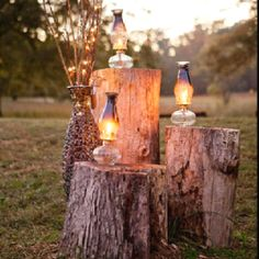 stumps + oil lanterns