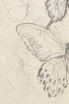 Cool Art Drawings, Art Drawings Sketches, Indie Drawings, Fairy Drawings, Cool Sketches, Pretty Art, Cute Art, Art Inspo, Art Journal Inspiration