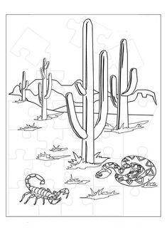Color the Desert Landscape Worksheets, Deserts and