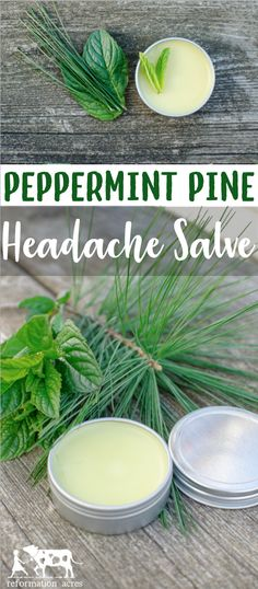Massage a dab of Peppermint Pine Headache Salve on your temples, shoulders, or neck when you first start to feel a headache coming on. Close your eyes, breathe deeply, and feel your headache  melt away. #natural #herbal #herbs #headache #salve