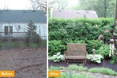 Bushes Cover a Chain Link Fence | Outdoor Privacy Ideas