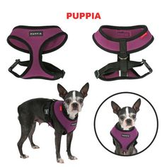 Puppia  SOFT HARNESS® AC30: PuppiaUS.com :