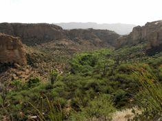 View from south of Boyce Thompson Arboretum State Park in Arnett Canyon, Arizona looking east toward Superior, Arizona
