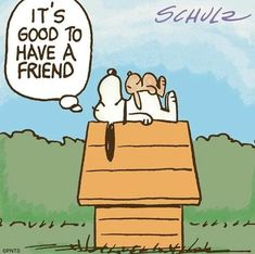 Life without True Friends is pretty grim so it's good to Appreciate them. 💟💐 It's the Quality Not Quantity that really counts. Snoopy Love, Charlie Brown And Snoopy, Snoopy And Woodstock, Peanuts Cartoon, Peanuts Snoopy, Charles Peguy, Snoopy Comics, Good Night Messages, Snoopy Quotes