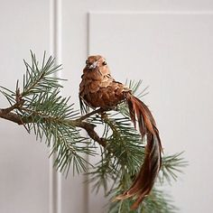 A trailing tail of natural feathers adorns this sweet bird ornament, each one made from a natural pine cone and affixed with a clip for easy decorating.- Pinecone, feather, polyfoam, metal clip- Indoor use only- Pinecone Ornaments, Diy Christmas Ornaments, Christmas Projects, Christmas Decorations, Xmas, Christmas Christmas, Pine Cone Art, Pine Cone Crafts, Pine Cones