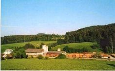 Wittwer AG Golf Courses, Google, Places, Maps, Real Estates, Things To Do, Swiss Guard, Projects, Ideas