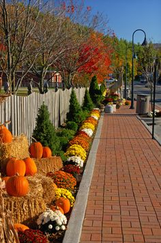 41 Welcome Fall! Decorating the Yard Fence - Welcome Fall! Decorating The Yard Fence 34