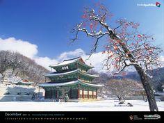 The view of Korea