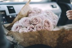roses | by ali mitton