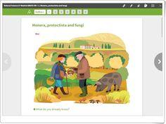 "Unidad 2 de Natural Science de 5º de Primaria: ""Monera, protoctista and fungi"""