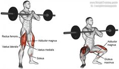 Zercher squat exercise