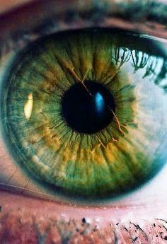 MANAGRA : ¿Que cuentan nuestros ojos?